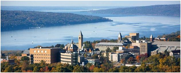 Cornell Program for International Undergraduates